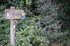 promenade-randonee-chemin-nohant-vic-36