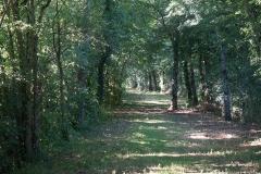 promenade-randonee-chemin-nohant-vic-7