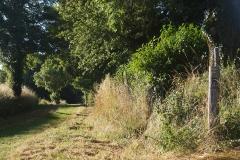 promenade-randonee-chemin-nohant-vic-8
