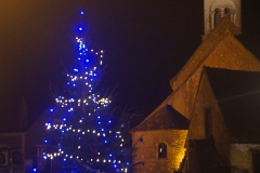 lumiere_noel_vic_2015_26