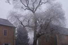 nohant-blanc-decembre-16-16