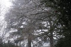 nohant-blanc-decembre-16-27