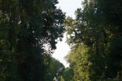 promenade-randonnee-chemin-nohant-25
