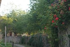 promenade-randonnee-chemin-nohant-38