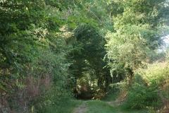 promenade-randonnee-chemin-nohant-8