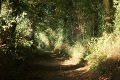 promenade-randonnee-chemin-nohant-9